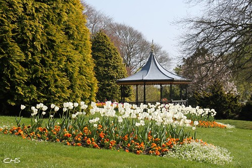 Truro's Victoria Gardens by Stocker Images
