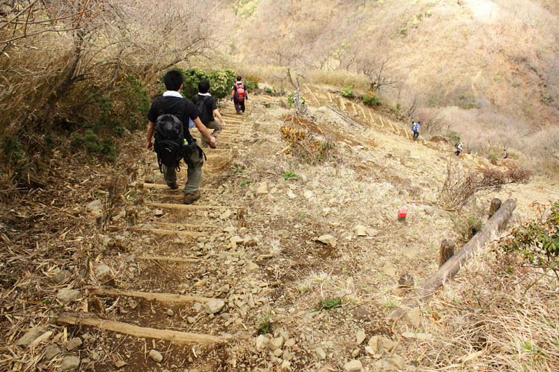 20110429_塔ノ岳(表尾根)_0022