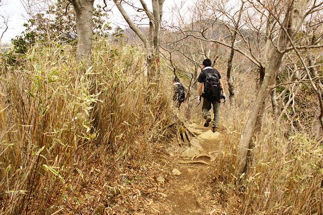 20110429_塔ノ岳(表尾根)_0031