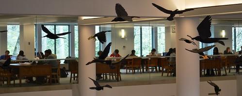 Ravens of Allen Lobby