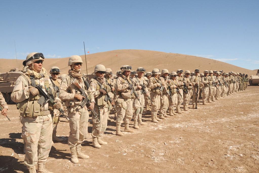 Armée Chilienne / Chile's armed forces / Fuerzas Armadas de Chile - Page 8 5790855256_84bdc13297_b