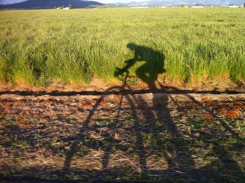 oregon cycling iphone shopride