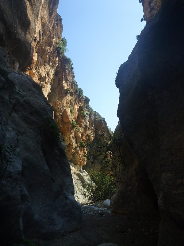 abas canyon