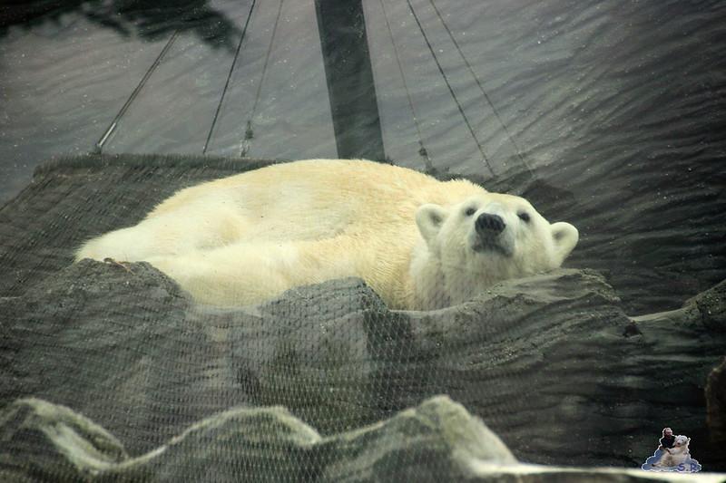 16 Uhr Bären Feierabend :-)