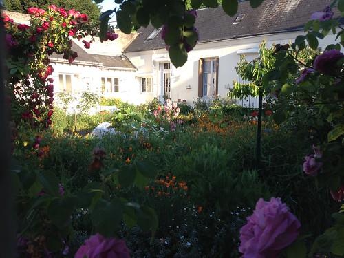 Blere garden