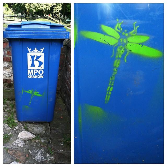 krakow-dragonfly