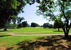 Cooters Pond Park Cover Photo