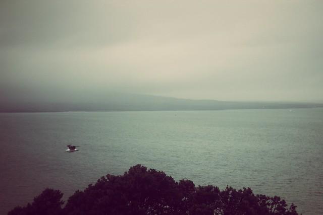 Auckland_03