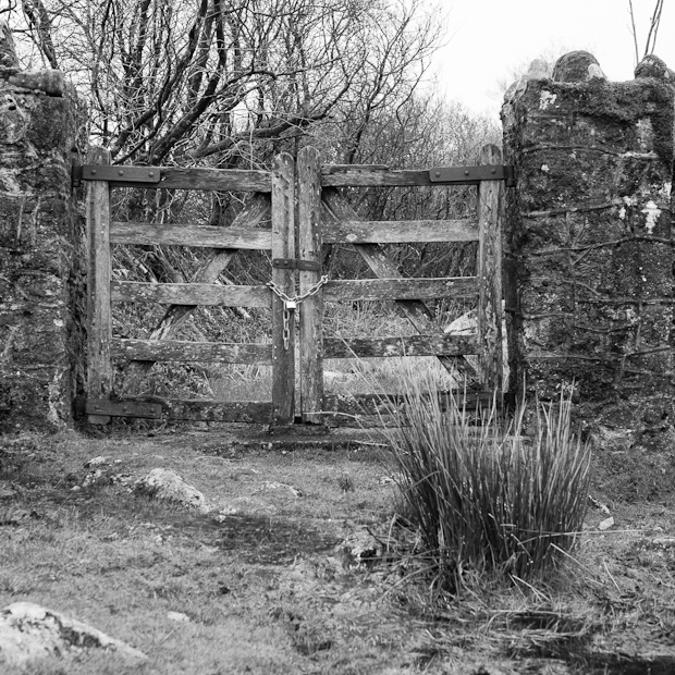 Dartmoor gate