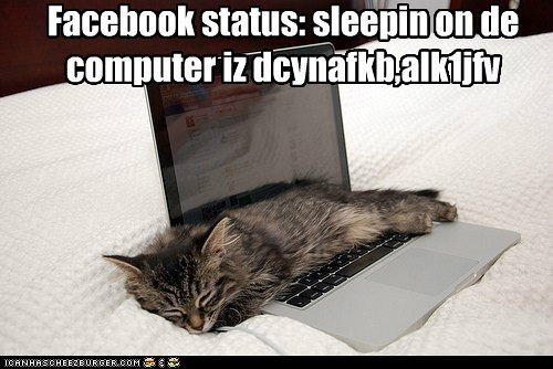 lol facebook-status-sleepin-on-de-computer-iz-dcynafkb-alkjfv