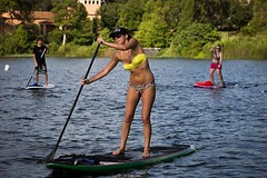 surface water sports, surfing--equipment and supplies, sports, leisure, water sport, stand up paddle surfing, paddle,