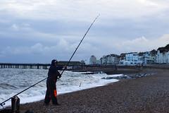 Fishing a dinner