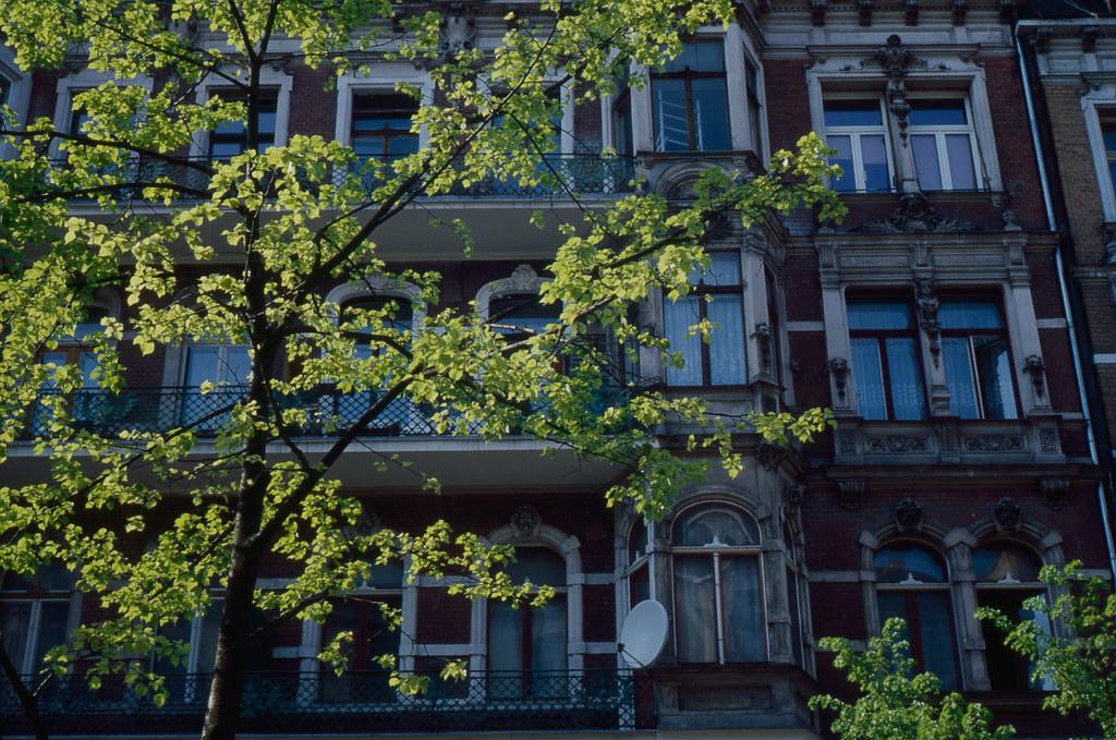 Poznań Part II: Spring leaves