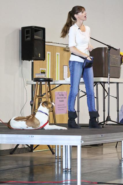 Image Result For Stilwell Dog Training