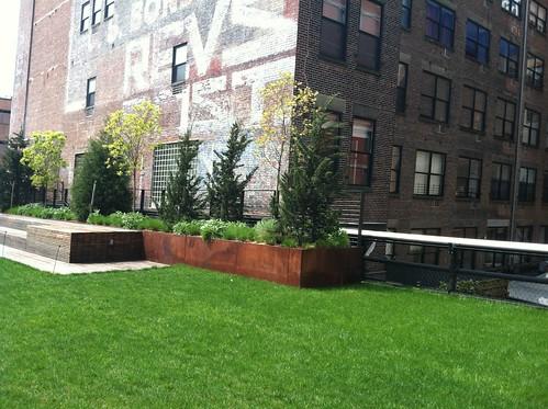 hi line grass