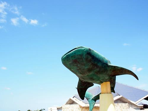 沖縄旅行 2012-04-08 10-31