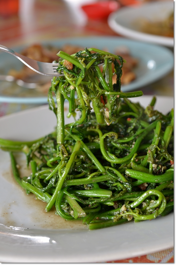Stir Fried Wild Fern Leaves with Sambal