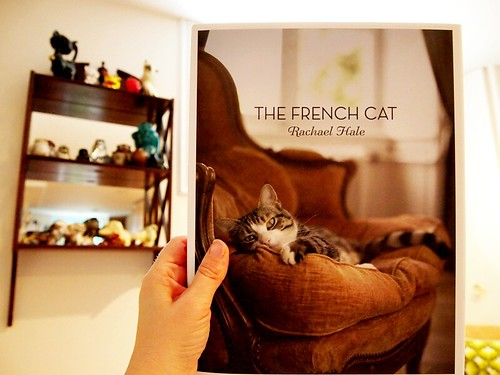 read - The French Cat