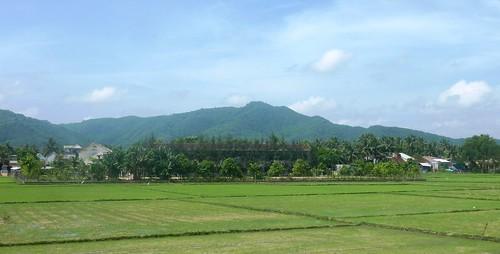 V-Route Quy Nhon-Da Nang (22)
