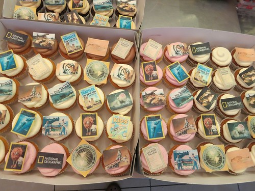 National Geographic Cupcakes by CAKE Amsterdam - Cakes by ZOBOT