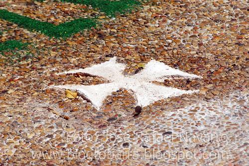 Alfombras del Corpus Christi 2012