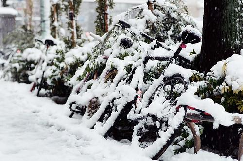 TOKYO SNOW 08
