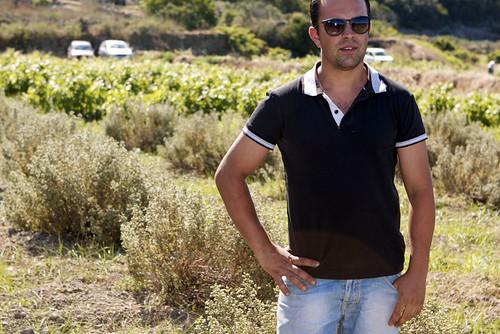in the sicilian sun