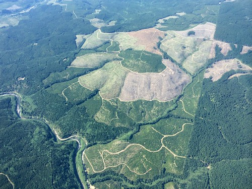 landscape washington logging aerial mtsainthelens signalmountain clearcuts cowlitzcounty