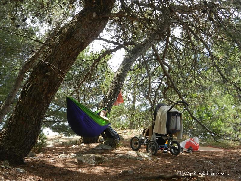 Сон в лесу