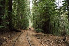 Santa Cruz Hike