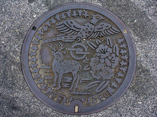 Seki Mie manhole cover 2(三重県関町のマンホール2)