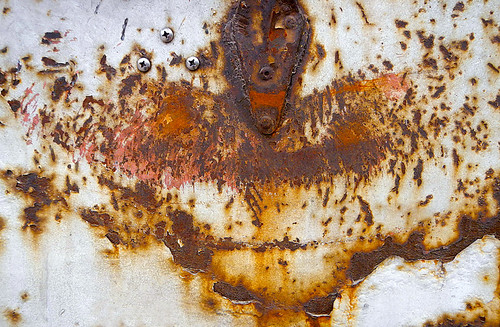 great rust owl