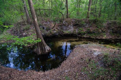 usa nature florida corridor conservation agriculture wetland greenway greeninfrastructure floridawildlifecorridor fwceflickr