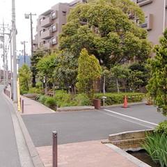 古隅田川の古隅田橋