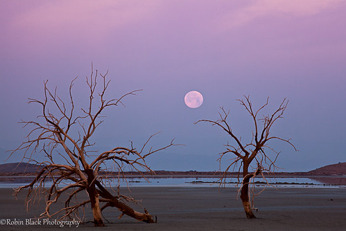 Supermoon moonset, Salton Sea