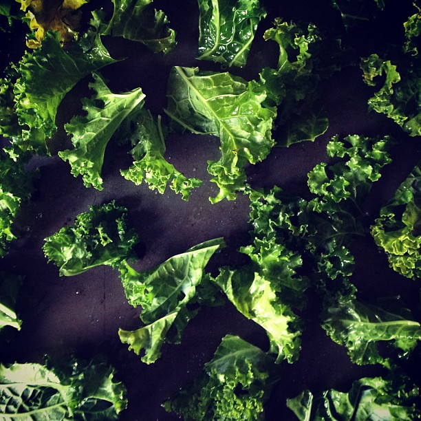 future kale chips.