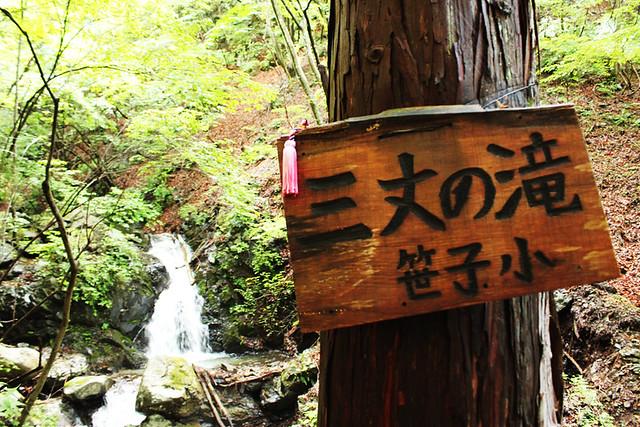 滝子山_18