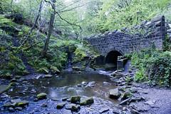 Bridge, Eldwick_Shipley Glen
