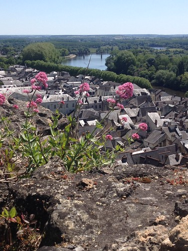 Chinon view