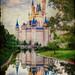 Cinderella Castle by Brett Kiger
