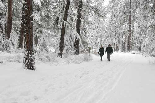Two Forest Service rangers walk through the snow covered paths at Lolo National Forest in Montana on November 22, 2007. Lolo National Forest is located in west central Montana and encompasses two million acres. USDA photo.
