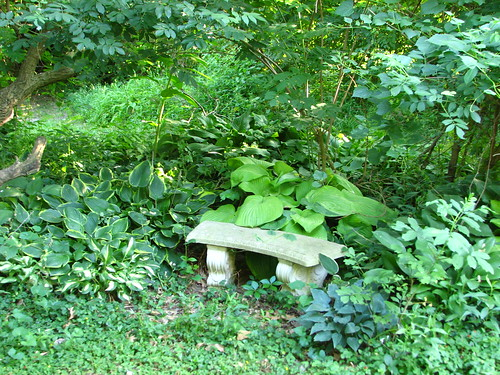 hosta bed with a bench