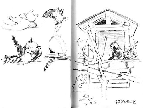 Chiba zoo05