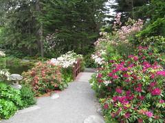 Gardens at Shore Acres State Park - Oregon