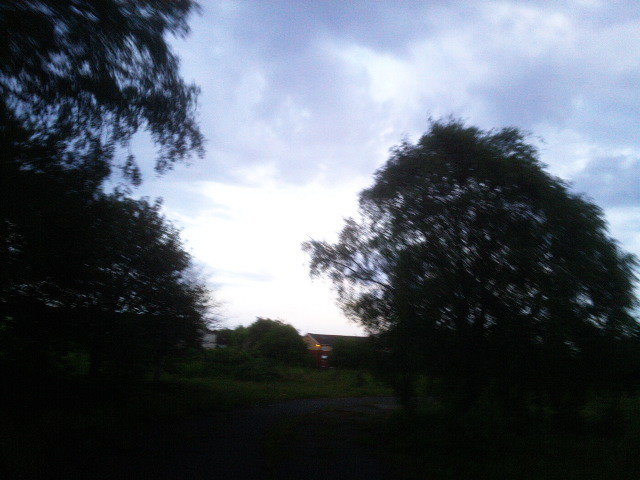 PIC_1371