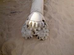 Trivella Per Pozzi D Acqua Drill For Wather Weel Non Ha Nu Flickr