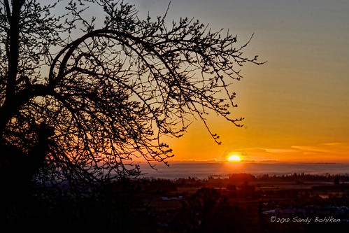 orange oregon sunrise forestgrove nikond7000