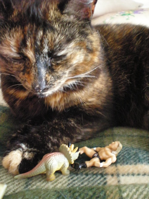 Cat, Dinosaur and Triple H
