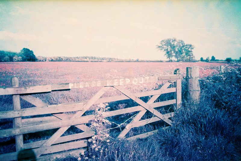 LomoChrome Test Film