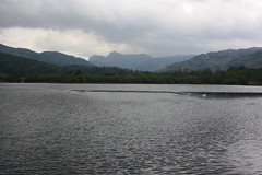 Elter water